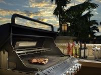 bwd_fl_mia_ri_steak_grill_adj_002